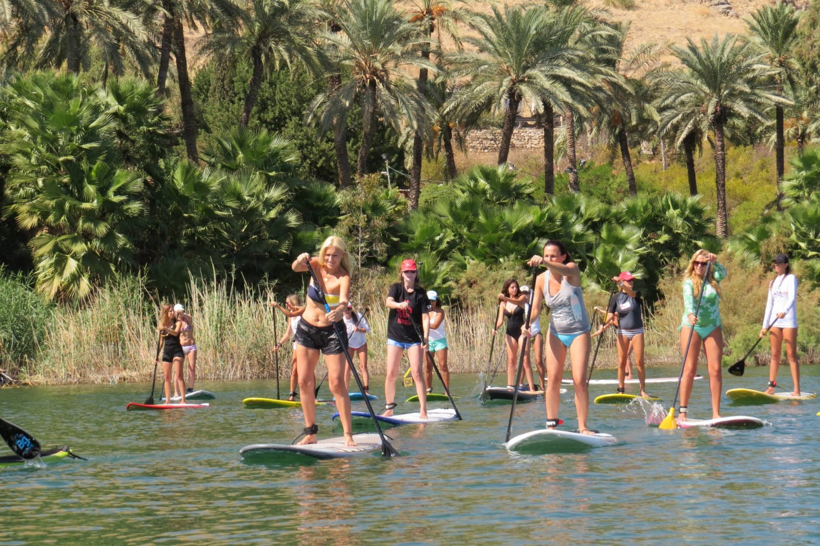 Paddle in the Sea of Galilee